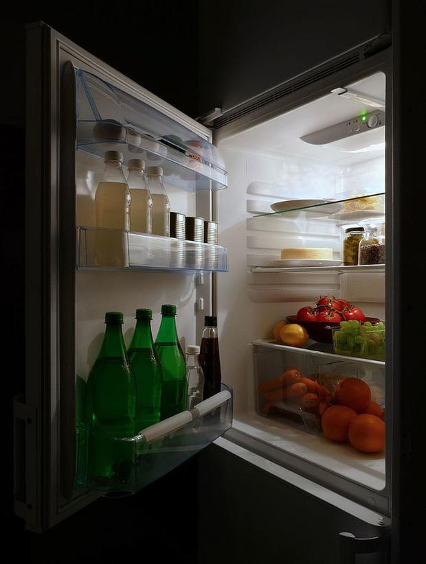 Ngày xưa mà chúng ta sử dụng dự án tủ lạnh của Albert Einstein và Leo Szilard, có khi tầng ozone đã không thủng một lỗ - Ảnh 2.