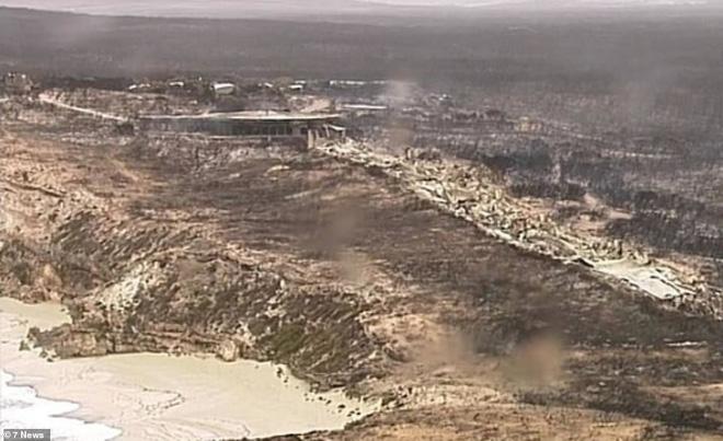 Xác kangaroo, gấu koala và cừu cháy đen, nằm la liệt bên đường ở Úc cho thấy thảm hoạ cháy rừng đang kinh khủng đến mức nào - Ảnh 5.