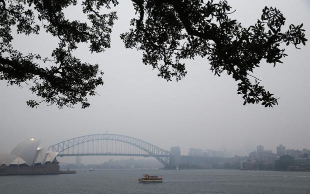Ngập bụi mịn vì cháy rừng, Sydney đang trở thành phòng thí nghiệm của cả thế giới - Ảnh 1.