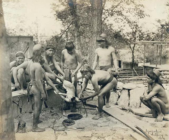 """""""Sở thú con người"""": Địa ngục trần gian của thổ dân nguyên thủy hay nơi giáo dục quần chúng của những người da trắng văn minh bậc nhất - Ảnh 6."""