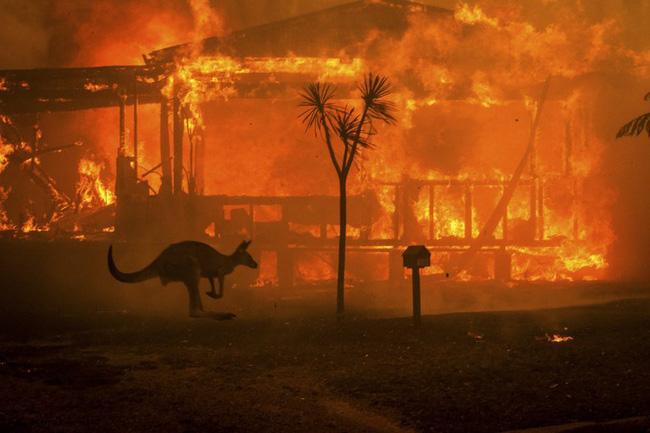 Úc bắt 183 kẻ tình nghi liên quan đến thảm họa cháy rừng, trong đó có 69 trẻ vị thành niên, đáng phẫn nộ nhiều kẻ còn tỏ ra phấn khích tột cùng khi nhìn thấy lửa - Ảnh 2.