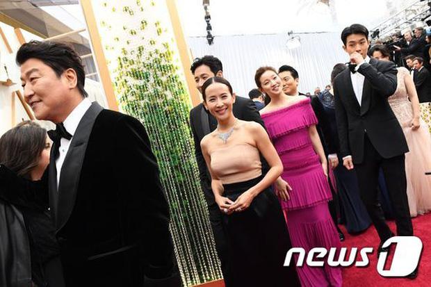 Dàn sao Ký sinh trùng gây sốt khi làm trò trên thảm đỏ Oscar 2020, nữ hoàng phim nóng và Park So Dam chiếm trọn spotlight - Ảnh 1.