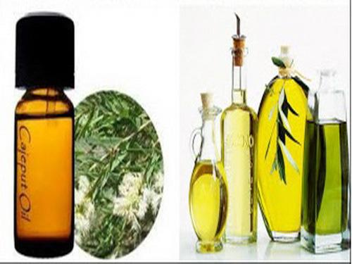 Tinh dầu tràm chống cúm, ngừa viêm nhiễm - Ảnh 1.