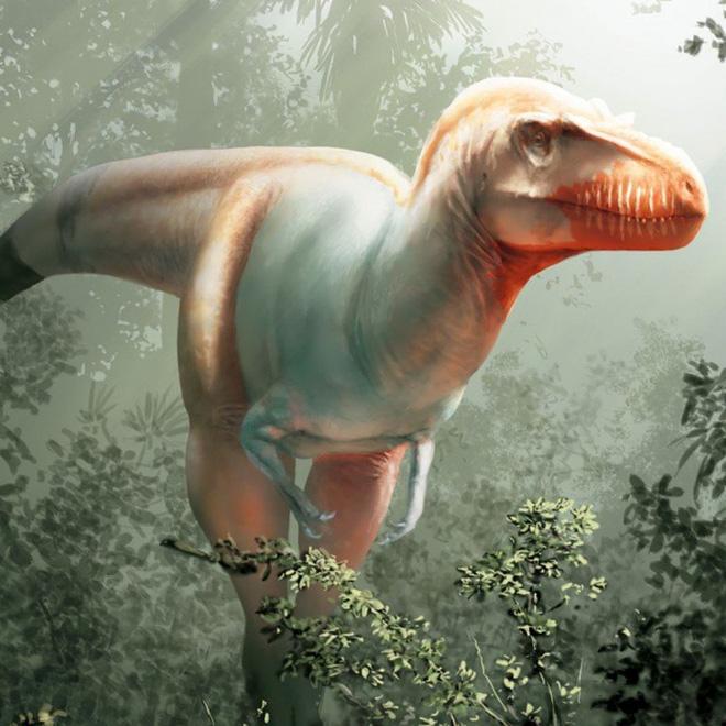 Phát hiện loài khủng long ăn thịt mệnh danh khủng long thần chết sống cách đây 79,5 triệu năm - Ảnh 2.