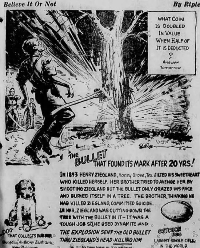 Chuyện về viên đạn kiên nhẫn ẩn thân 20 năm trong thân cây cuối cùng cũng giết được người cần giết và hoàn thành nhiệm vụ ngày xưa - Ảnh 1.