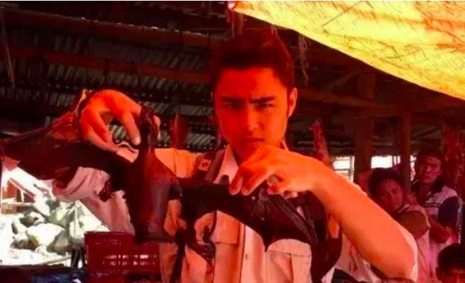 Giữa đại dịch corona: Loạt sao Hoa - Hàn gánh hậu quả lớn vì lộ clip ăn thịt động vật hoang dã  - Ảnh 2.