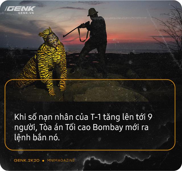 Những con hổ ăn thịt người ở Ấn Độ: Cái giá của sự bảo tồn? - Ảnh 15.