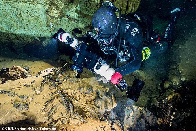 Lặn xuống hang ngầm thời cổ đại, các nhà khảo cổ phát hiện hàng loạt điều bất ngờ  - Ảnh 8.