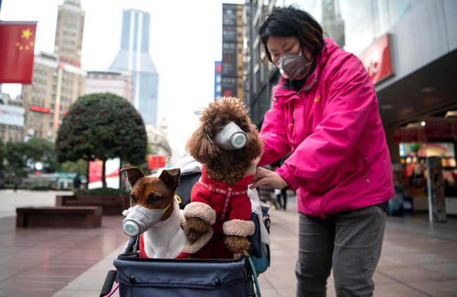 Sau khi tan hoang vì corona, nhiều thành phố lớn tại Trung Quốc bắt đầu hồi sinh - ảnh 15