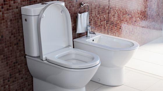 Trông có vẻ bẩn thỉu nhưng thứ trong phòng tắm này sẽ thành thiết bị y tế quan trọng của tương lai - Ảnh 3.