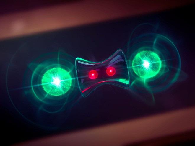Khoa học tìm thấy bằng chứng về khả năng bất tử của giả hạt: chúng tự tái tạo sau khi đã phân rã - Ảnh 2.