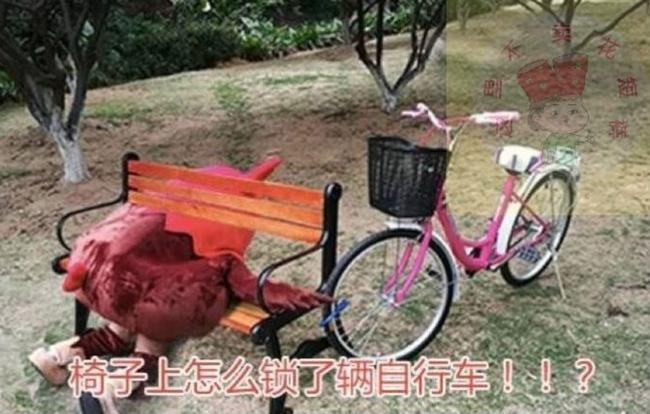 Khoá xe đạp vào ghế trong công viên, lát sau mất cả xe lẫn ghế, cô gái đi tìm thì phát hiện hai tên trộm trong tình trạng khó đỡ - Ảnh 9.