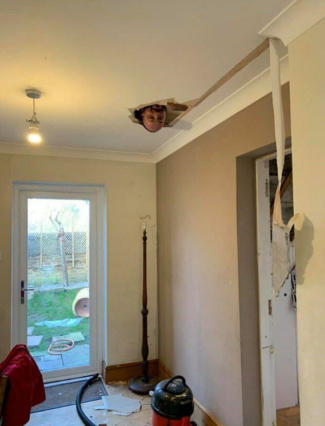 Đang dọn dẹp để sửa sang nhà cửa, người phụ nữ hốt hoảng khi nhìn thấy đầu người trên trần nhà trước khi phát hiện sự thật không ai ngờ - Ảnh 1.