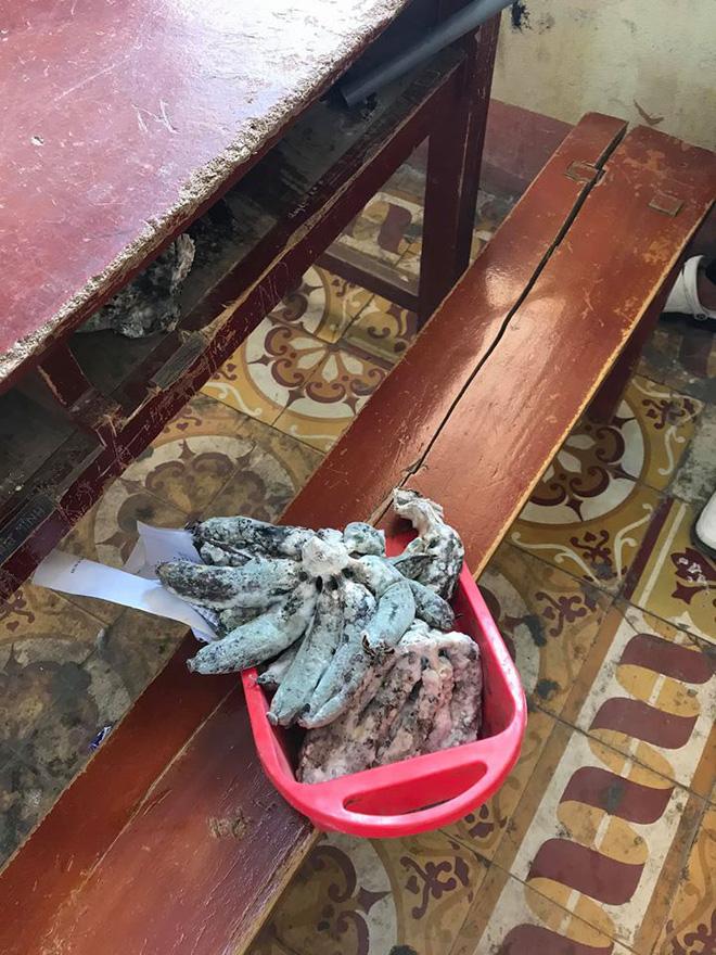 Học trò thi nhau toang vì thức ăn để quên trong lớp mốc meo, mọc rêu, hôi thối... do nghỉ Tết quá dài - Ảnh 3.