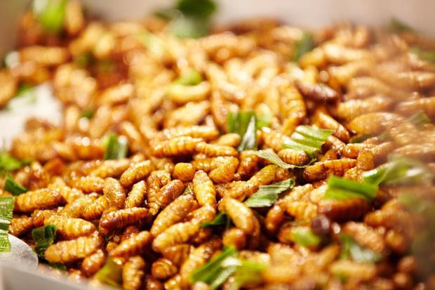 Mê mẩn một món đặc sản có nguồn gốc từ côn trùng ở Việt Nam, anh chàng nước ngoài đăng đàn hỏi tên để mua lại cho bằng được - Ảnh 4.