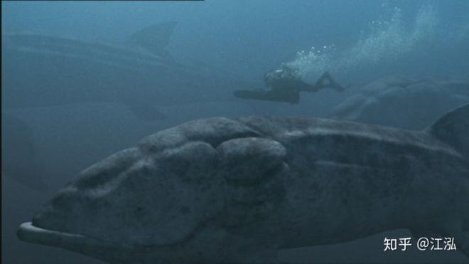 Leedsichthys: Máy hút bụi của biển cả Kỷ Jura từng bị hiểu nhầm là khủng long - Ảnh 8.
