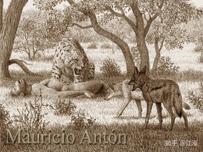 Tổ tiên của loài người đã từng gây ra sự tuyệt chủng của động vật từ 4 triệu năm về trước - Ảnh 11.
