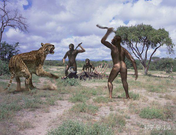 Tổ tiên của loài người đã từng gây ra sự tuyệt chủng của động vật từ 4 triệu năm về trước - Ảnh 9.
