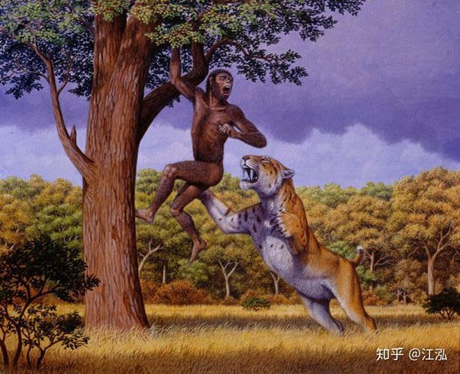 Tổ tiên của loài người đã từng gây ra sự tuyệt chủng của động vật từ 4 triệu năm về trước - Ảnh 10.