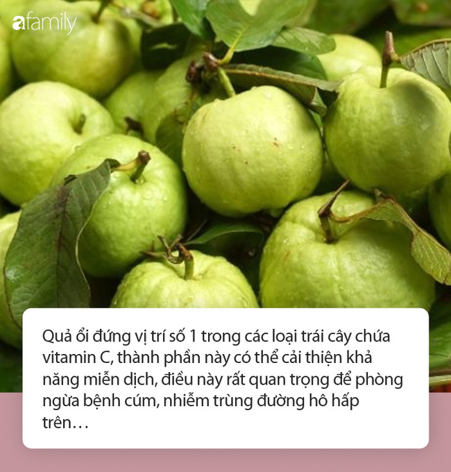 Ổi: Loại trái cây rẻ tiền nhưng lại là một trong 3 siêu thực phẩm bảo vệ sức khỏe đường ruột trong mùa dịch - Ảnh 1.