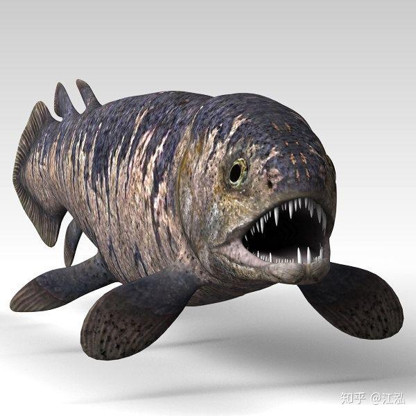 Rhizodus hibberti : Quái vật kinh hoàng của kỷ Carbon - Ảnh 5.