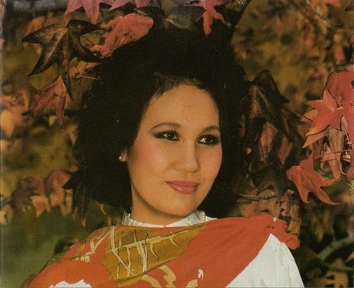 Danh ca Thái Thanh: Sau âm nhạc là huyền thoại về một người mẹ khiến ai cũng ngưỡng mộ - Ảnh 6.