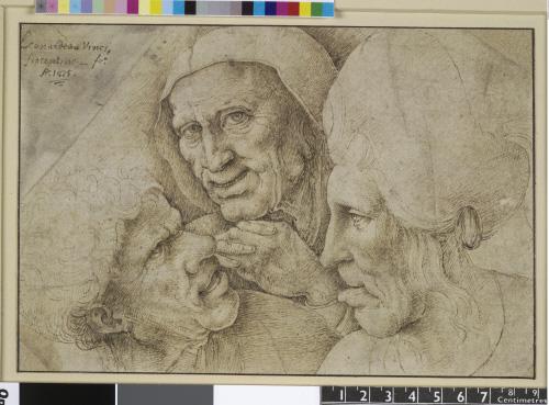 Giải mã bí ẩn trong những bức họa xấu xí trong sổ tay của Leonardo da Vinci - Ảnh 4.