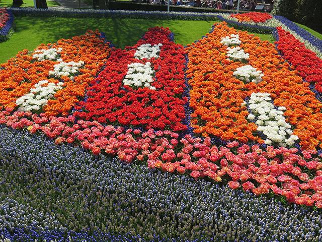 Keukenhof - Thiên đường của các loài hoa - Ảnh 21.