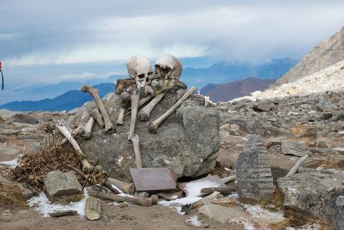Thiên nhiên kỳ bí: Bí mật vùng đất chứa 800 bộ hài cốt và loài nấm ma thuật kinh dị nhất mọi thời đại - Ảnh 2.