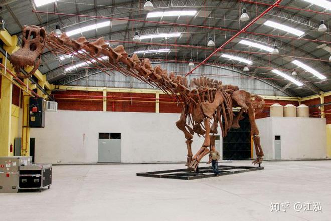 Các nhà cổ sinh vật học tính trọng lượng của khủng long như thế nào? - Ảnh 5.