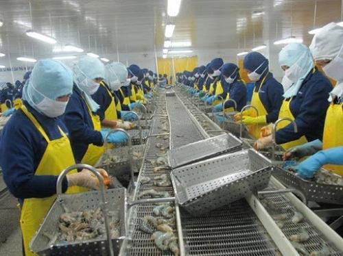 Nhiều doanh nghiệp thủy sản chưa có đơn hàng mới trong quý II và III - Ảnh 1.