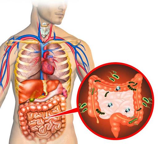 8 khung giờ thải độc cho cơ thể: Ai làm được sẽ giảm bớt nguy cơ bị bệnh ở nội tạng - Ảnh 4.