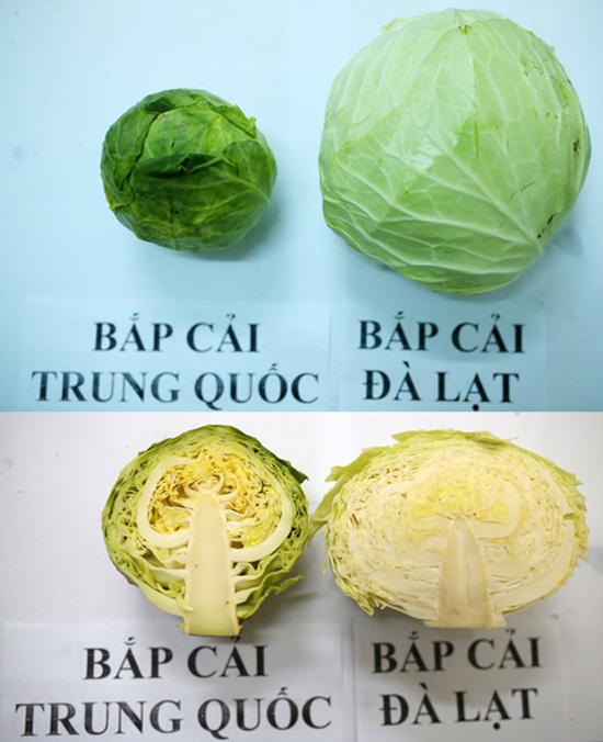 Tuyệt chiêu để phân biệt rau củ Trung Quốc và Việt Nam cho các bà nội trợ - Ảnh 1.
