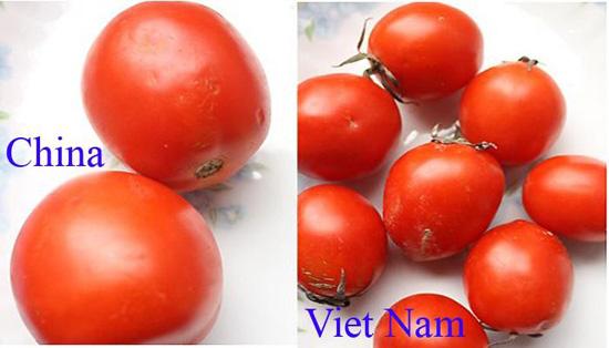 Tuyệt chiêu để phân biệt rau củ Trung Quốc và Việt Nam cho các bà nội trợ - Ảnh 2.