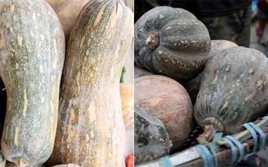 Tuyệt chiêu để phân biệt rau củ Trung Quốc và Việt Nam cho các bà nội trợ - Ảnh 3.