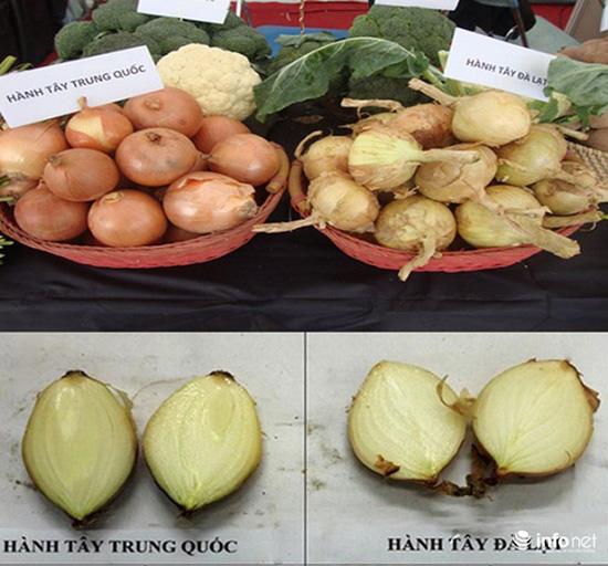 Tuyệt chiêu để phân biệt rau củ Trung Quốc và Việt Nam cho các bà nội trợ - Ảnh 5.