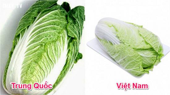 Tuyệt chiêu để phân biệt rau củ Trung Quốc và Việt Nam cho các bà nội trợ - Ảnh 6.