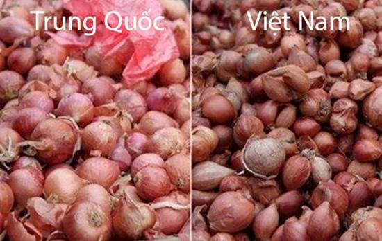 Tuyệt chiêu để phân biệt rau củ Trung Quốc và Việt Nam cho các bà nội trợ - Ảnh 8.