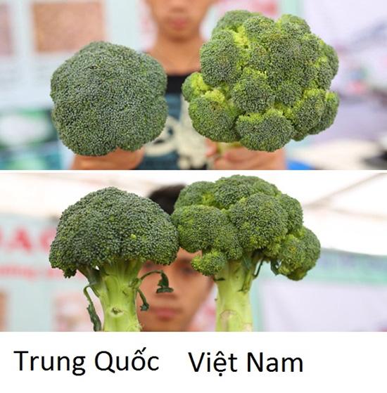 Tuyệt chiêu để phân biệt rau củ Trung Quốc và Việt Nam cho các bà nội trợ - Ảnh 10.