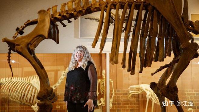 Sự tuyệt chủng của những loài động vật có vú lớn tại Bắc Mỹ đã mang tới hậu quả gì? - Ảnh 10.