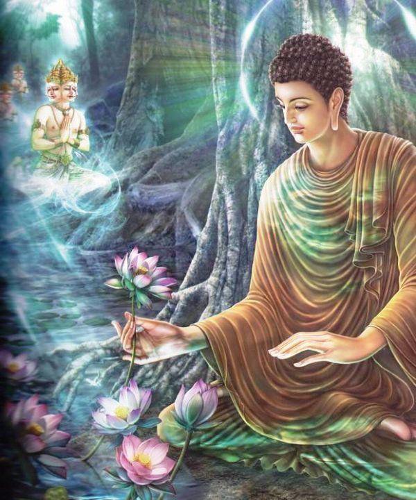 10 bài học từ những lời dạy của Đức Phật: Để không tổn thọ, hãy nhớ kỹ điều số 7 - Ảnh 1.