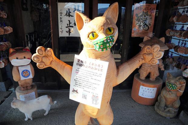 Ngôi đền đặc biệt ở Nhật Bản được mệnh danh là Đền Mèo, trụ trì tự tay làm khẩu trang cho hàng trăm chú mèo gỗ từ tã lót trẻ em - Ảnh 8.