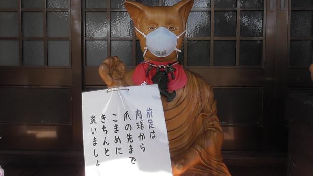 Ngôi đền đặc biệt ở Nhật Bản được mệnh danh là Đền Mèo, trụ trì tự tay làm khẩu trang cho hàng trăm chú mèo gỗ từ tã lót trẻ em - Ảnh 9.