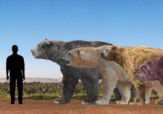 5 loài động vật thời tiền sử chuyên săn lùng tổ tiên của chúng ta - Ảnh 4.