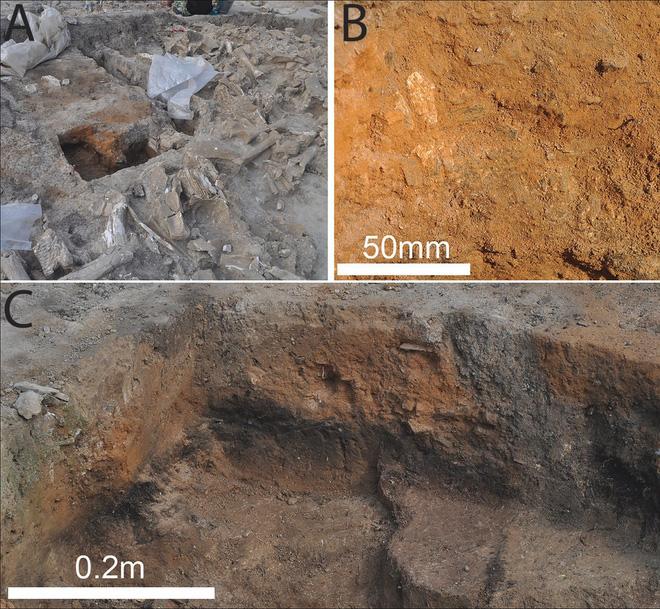 Người tiền sử xây nhà sống qua Kỷ băng hà từ xương quái thú khổng lồ đã bị tuyệt chủng? - Ảnh 4.