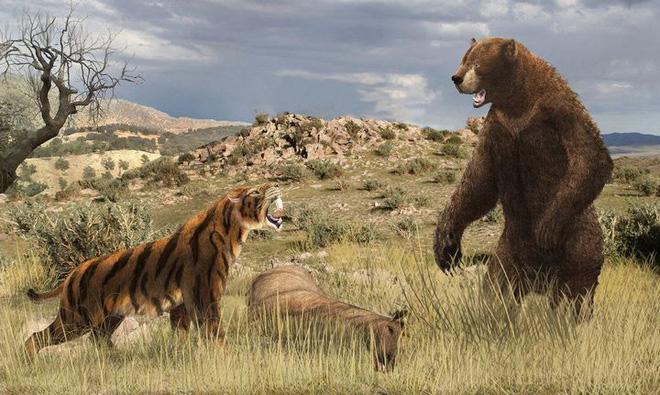 5 loài động vật thời tiền sử chuyên săn lùng tổ tiên của chúng ta - Ảnh 5.