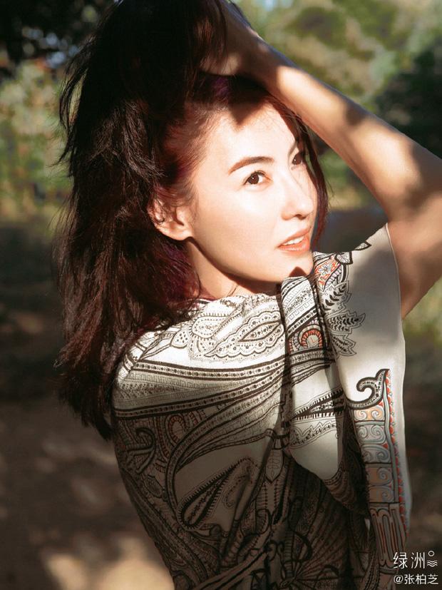 Ngắm nhìn visual Trương Bá Chi ai mà ngờ đã 1 nách 3 con, thảo nào dàn trai đào hoa Tạ Đình Phong, Trần Quán Hy mê mệt - Ảnh 2.