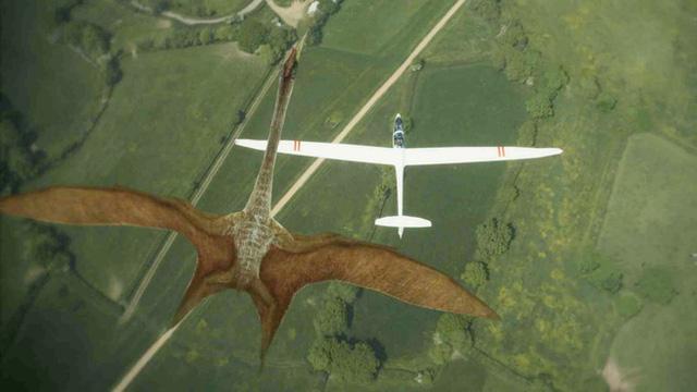 Thằn lằn bay Quetzalcoatlus – Sinh vật khiến khủng long T-rex phải khiếp sợ - Ảnh 4.