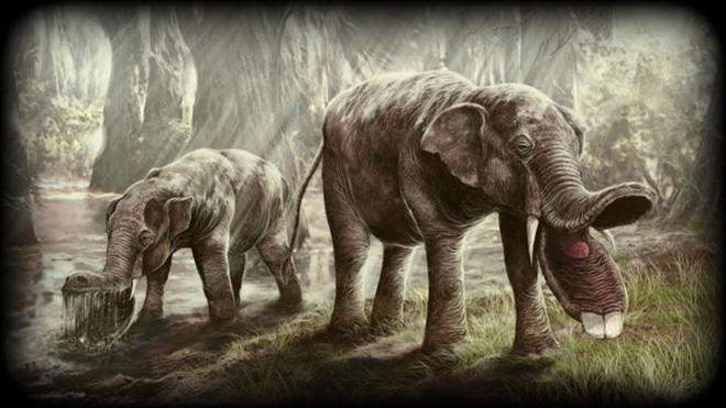 Vì sự ảnh hưởng của con người, một số động vật thậm chí đã bắt đầu đảo ngược quá trình tiến hóa - Ảnh 5.