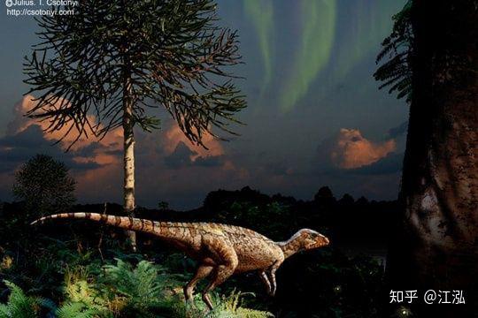 Nam Cực đã từng được bao phủ bởi rừng mưa ôn đới 90 triệu năm trước - Ảnh 13.
